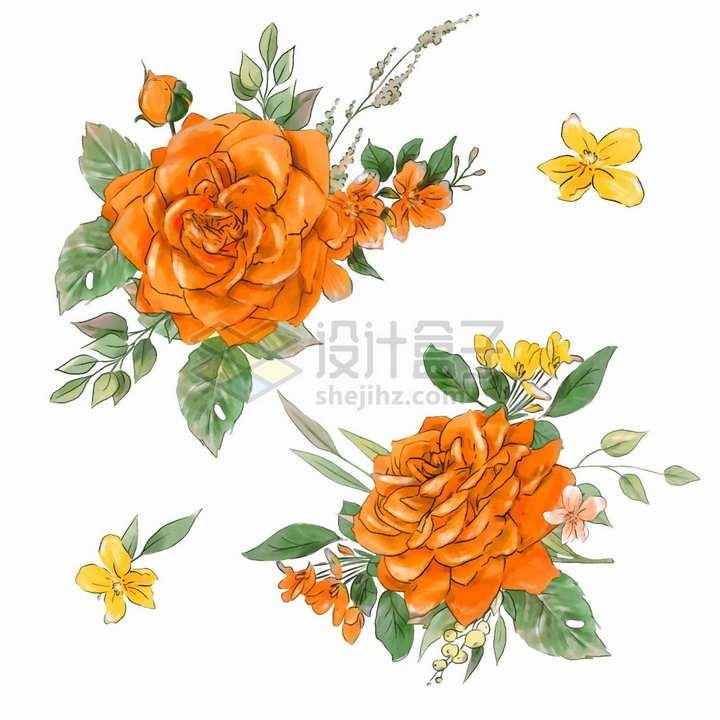 鲜艳的橘色玫瑰花桃花等花朵花苞水彩插画png图片素材