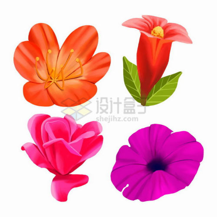 芍药花玫瑰花兰花等花卉png图片免抠矢量素材