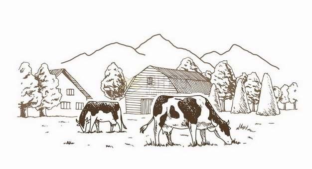 乡村复古素描风格在农场草地上吃草的奶牛风景图png图片免抠矢量素材