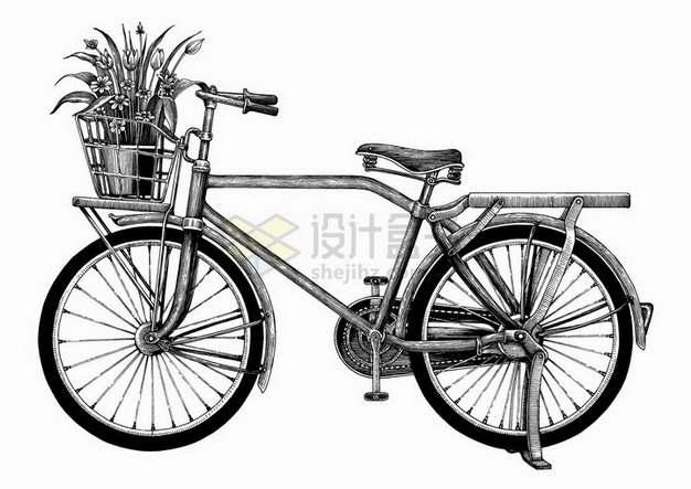 老式复古自行车车篮中有盆栽手绘素描插画png图片免抠矢量素材