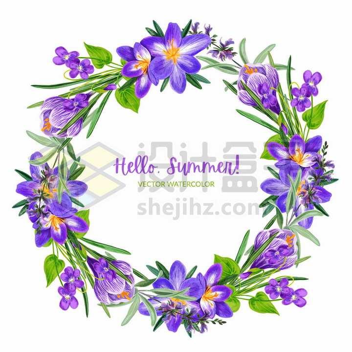 番红花等紫色花朵鲜花野花组成的花环彩绘插画png图片免抠矢量素材