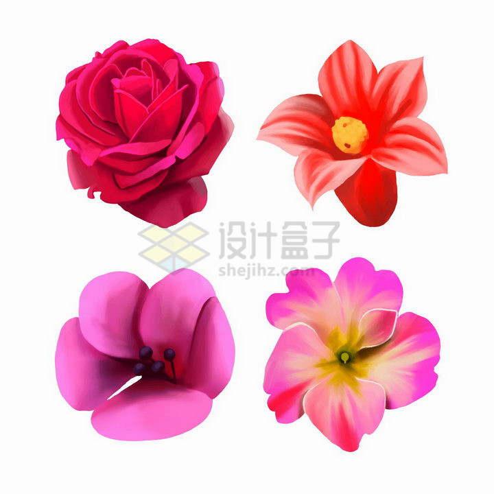 逼真的月季花郁金香等红色花卉png图片免抠矢量素材