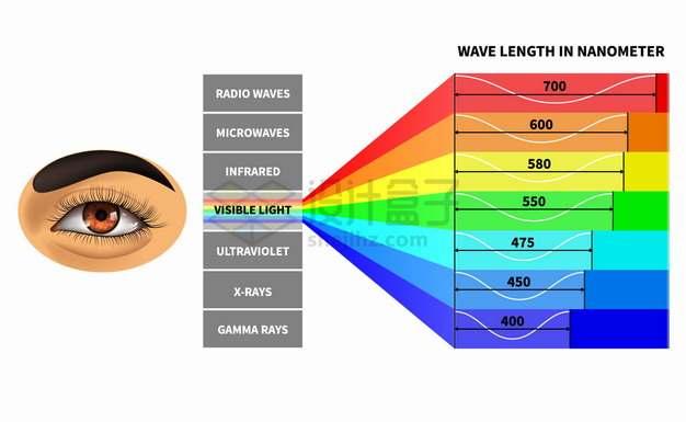 肉眼可见光光谱在电磁频谱中的分布物理教学配图png图片素材
