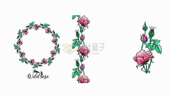 彩绘月季花鲜花花朵红花花环和装饰png图片免抠矢量素材