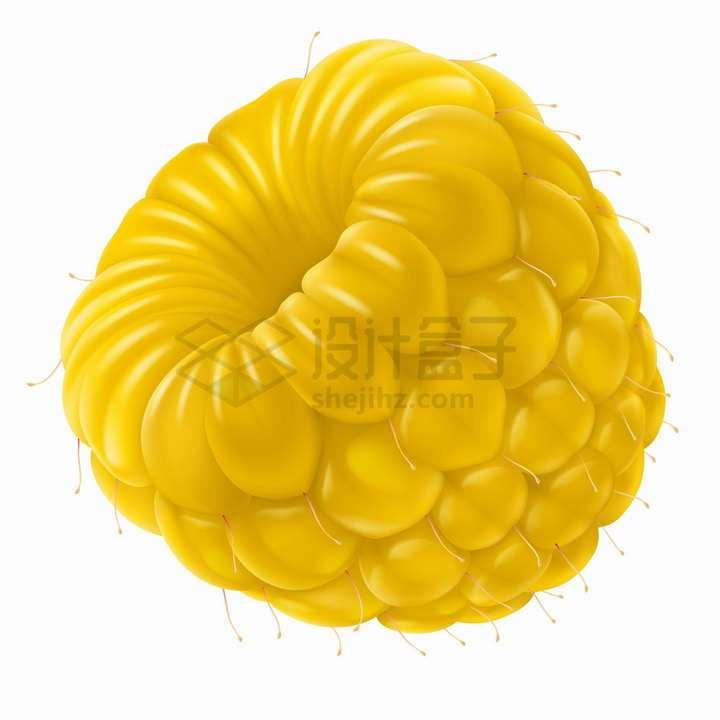 金黄色的黄树莓美味水果png图片免抠矢量素材