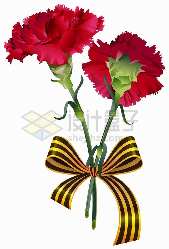 红色康乃馨鲜花花束母亲节png图片免抠矢量素材