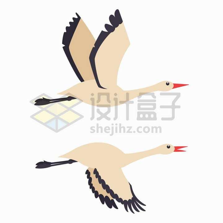简约飞行中的仙鹤扁平插画png图片免抠矢量素材