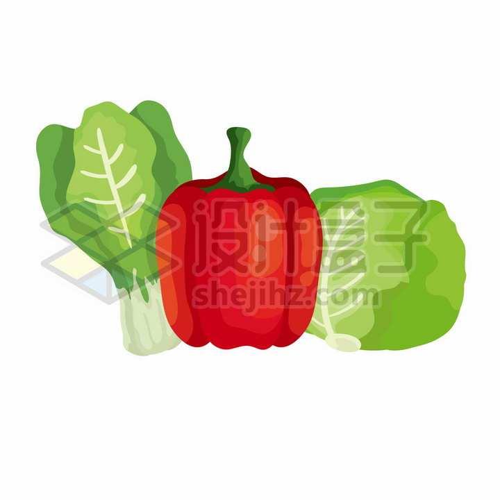 生菜灯笼椒和包菜等美味蔬菜插画png图片免抠矢量素材