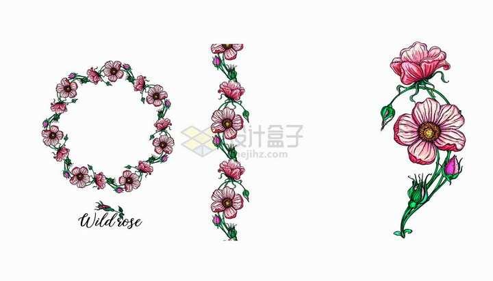 彩绘月季花红色花朵边框鲜花和装饰png图片免抠矢量素材
