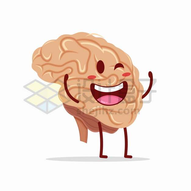 可爱的卡通大脑人体器官组织png图片素材