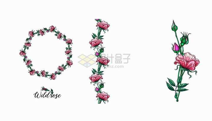 彩绘月季花鲜花花朵花环和装饰png图片免抠矢量素材