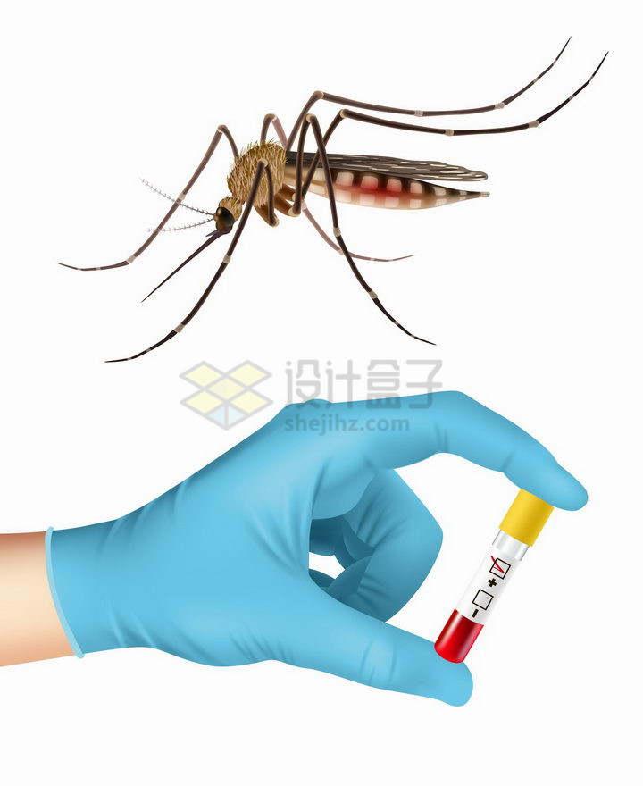一只逼真的蚊子和医生手中的血液样本png图片免抠矢量素材