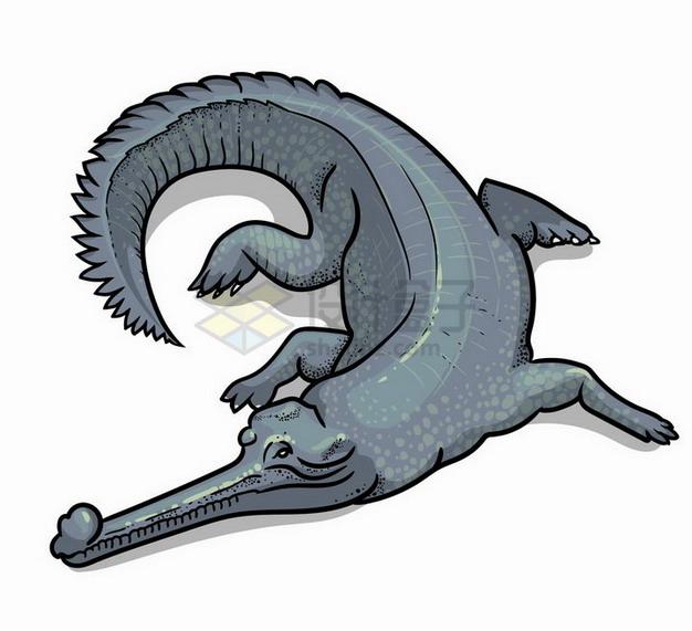 手绘插图鳄鱼野生动物png图片免抠矢量素材 生物自然-第1张