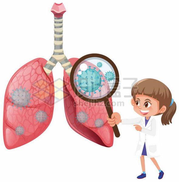 卡通女医生拿着放大镜找到肺部上的新型冠状病毒和肺炎png图片免抠矢量素材