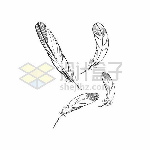 4根黑色线条素描羽毛png图片素材 漂浮元素-第1张