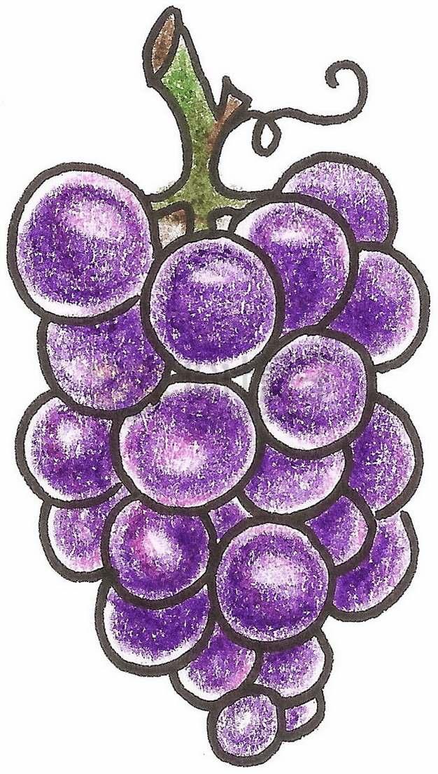 手绘涂鸦紫色葡萄png图片素材