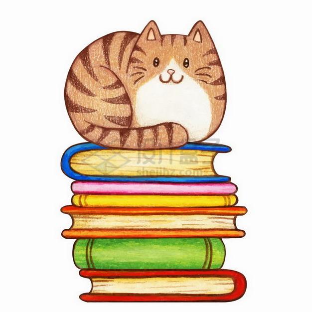 水彩画风格坐在书本上的猫咪png图片免抠矢量素材 生物自然-第1张