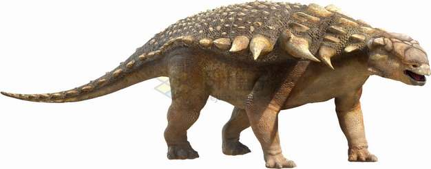 逼真的甲龙草食恐龙复原图png图片素材