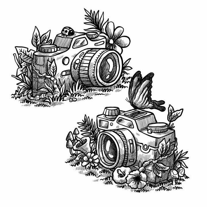 黑色线条素描风格草丛花丛中的数码单反照相机png图片免抠矢量素材