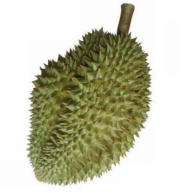 一颗完整的马来西亚榴莲png图片素材