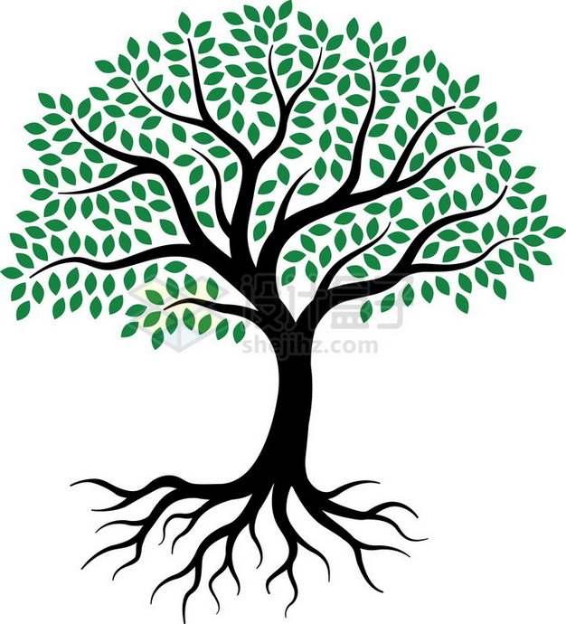 黑色大树树根剪影和绿色的树叶png免抠图片素材