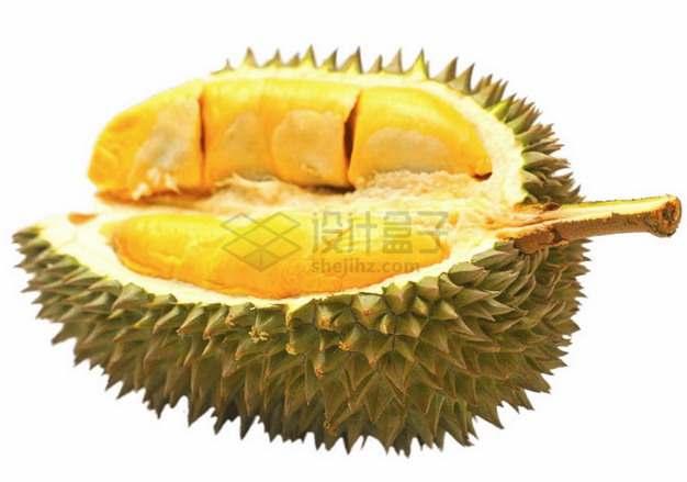 剥开的泰国金枕头榴莲png图片素材