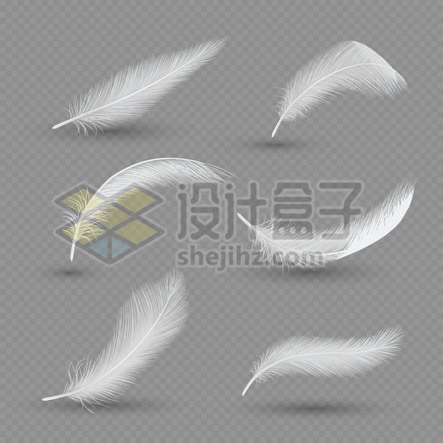 6个逼真的轻飘飘白色羽毛鸟毛png图片素材 漂浮元素-第1张