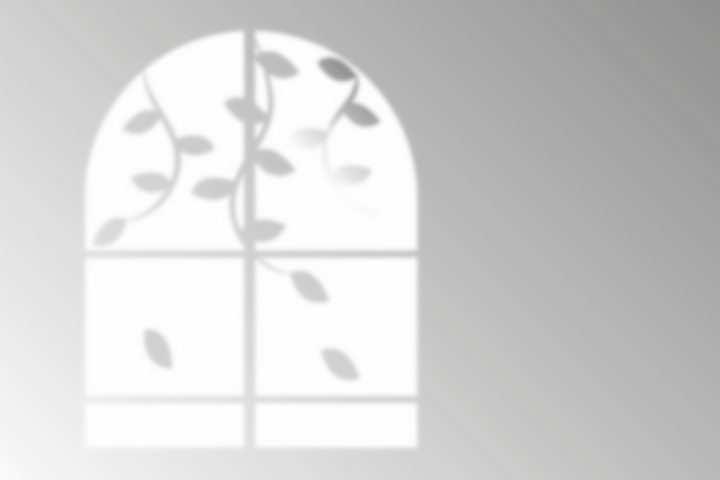 藤蔓拱形窗户影子png图片免抠矢量素材