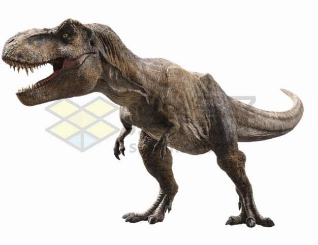 张牙舞爪的霸王龙特暴龙大型食肉恐龙png图片免抠素材