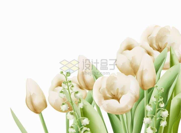 盛开的桔梗花铃铛花水彩插画png图片素材