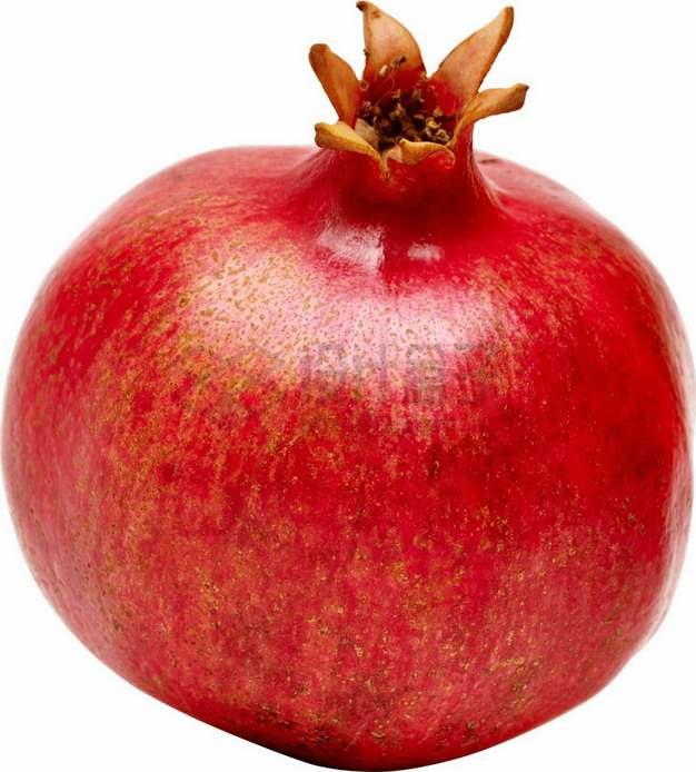 完整的红色枣庄石榴png图片素材