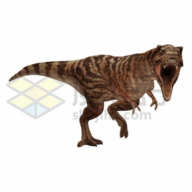 凶悍的霸王龙特暴龙大型食肉恐龙png图片免抠素材