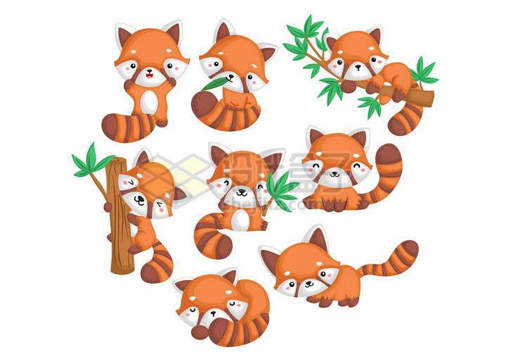 各种卡通小熊猫可爱动物png图片免抠矢量素材