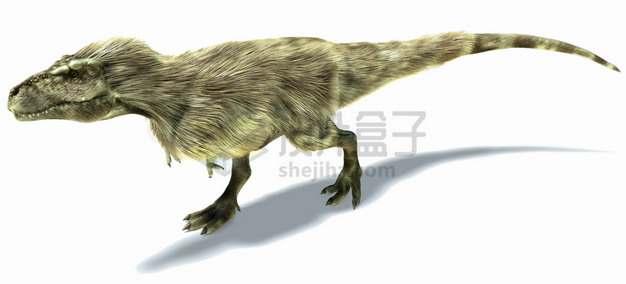 长着长毛的霸王龙大型食肉恐龙png图片免抠素材