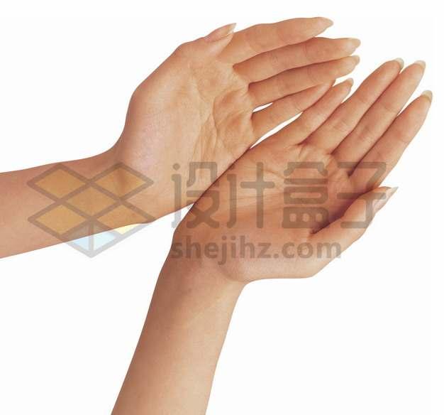 双手捧起的动作姿势png图片素材