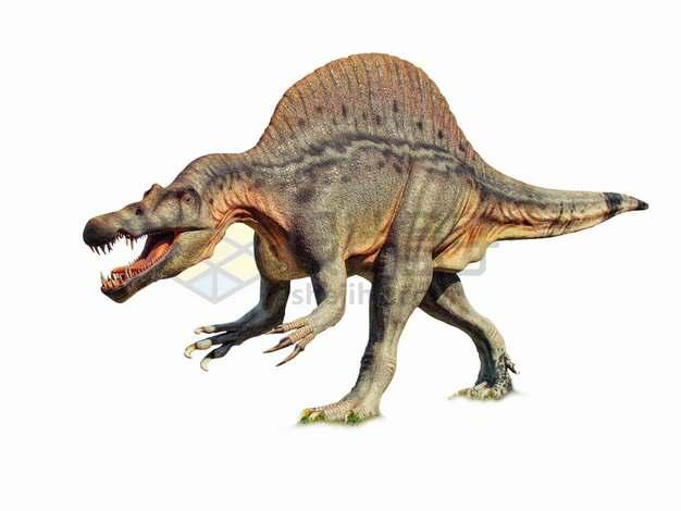 棘龙肉食恐龙png图片素材