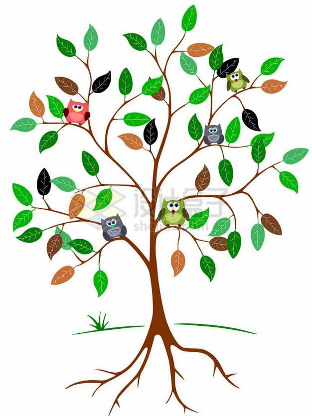 卡通带树根的大树和树上的猫头鹰png免抠图片素材