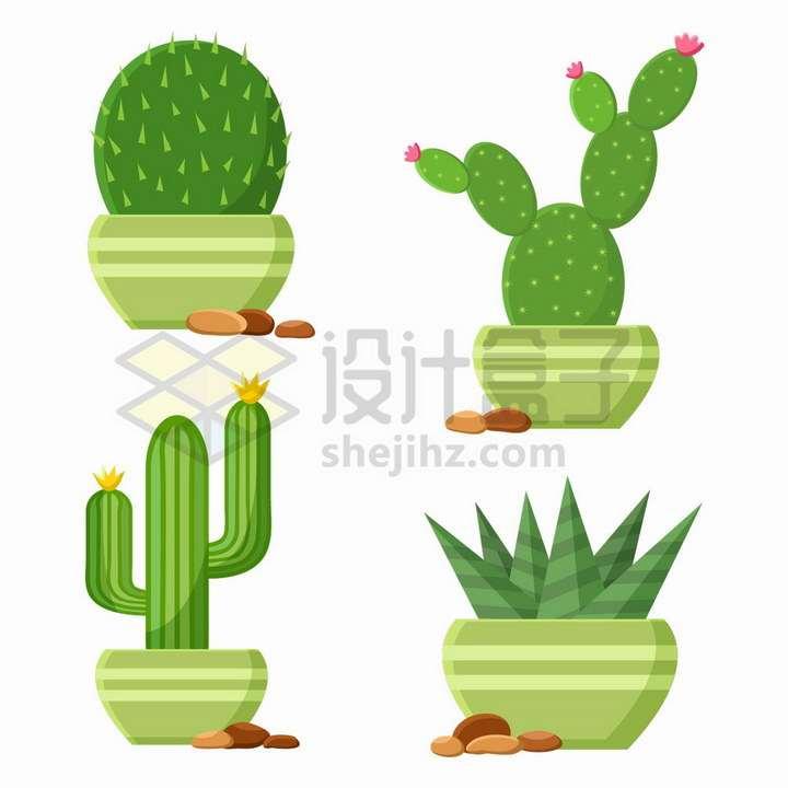 4款绿色花盆中的仙人球仙人掌仙人棒和芦荟盆栽png图片免抠矢量素材