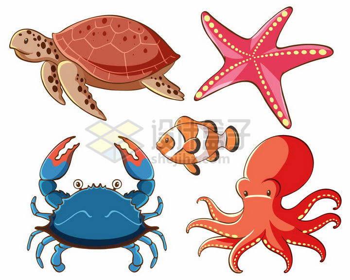卡通海龟海星螃蟹小丑鱼和章鱼等海洋动物png图片免抠矢量素材