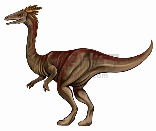 迅猛龙肉食恐龙复原图png图片素材