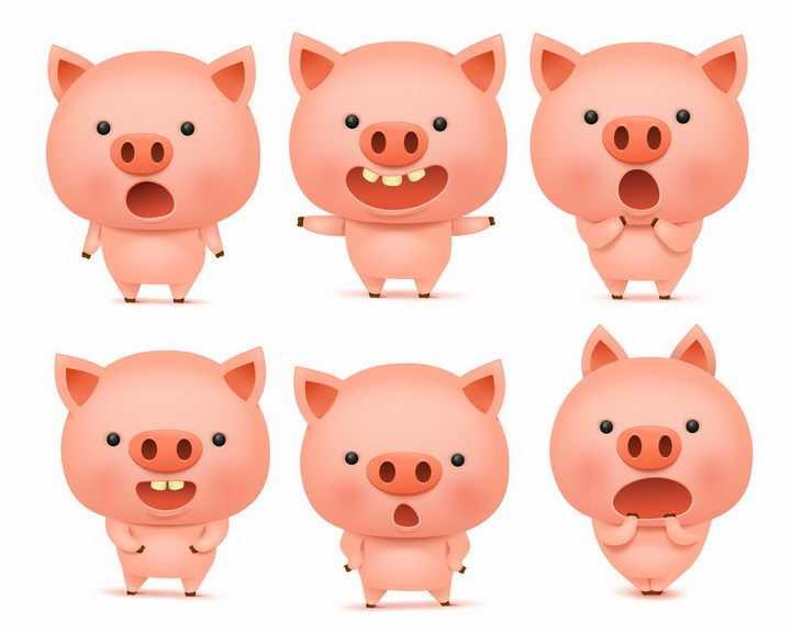 6款做出各种表情的可爱卡通小猪png图片免抠矢量素材