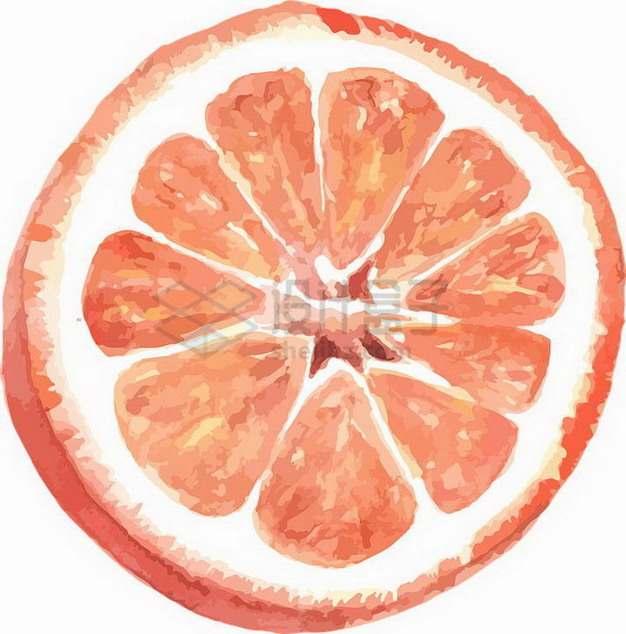 切开的红心柚子暹罗柚水彩画png图片素材