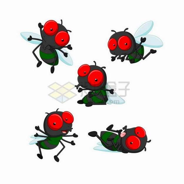 5款红眼睛卡通苍蝇png图片免抠矢量素材