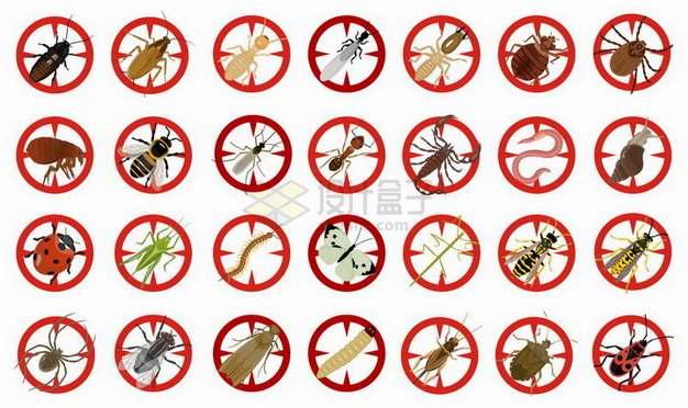 28款蟑螂白蚁蚊子蝎子蜈蚣等害虫禁止标志png图片素材