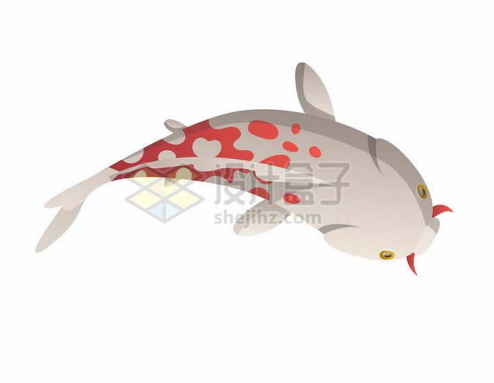 俯视视角的斑点卡通鲤鱼锦鲤png图片免抠矢量素材