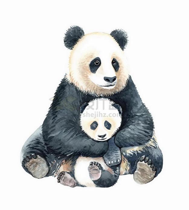彩绘风格抱着熊猫宝宝的大熊猫妈妈png图片免抠矢量素材 生物自然-第1张