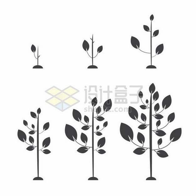 植物发芽成长的6个阶段植树节剪影png图片免抠矢量素材