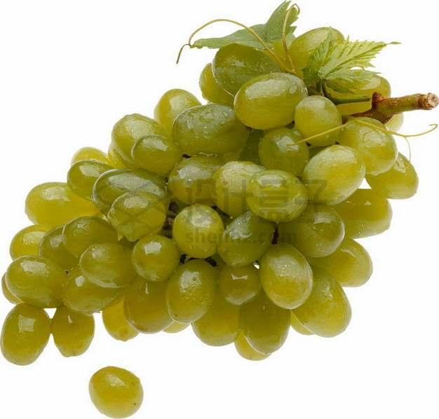 一串青提葡萄png图片素材