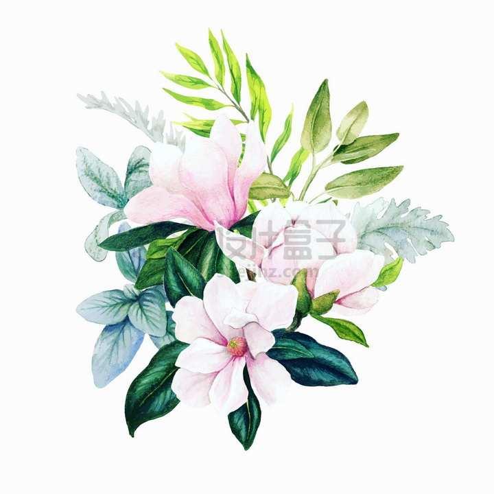 玉兰花花朵叶子一束鲜花水彩插画png图片素材