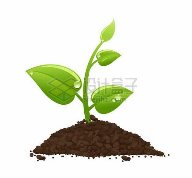 冒出泥土的植物发芽植树节png图片免抠矢量素材